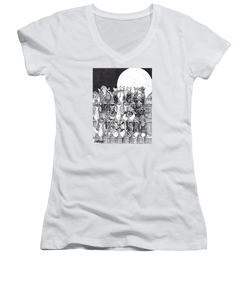 Women's V-Neck T-Shirt (Junior Cut) featuring the drawing Two Dozen And One Cats by Seth Weaver