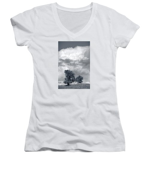 Two Trees #9249 Women's V-Neck T-Shirt (Junior Cut) by Andrey Godyaykin