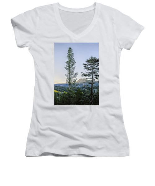 Two Trees Women's V-Neck (Athletic Fit)