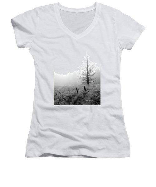 Unadorned Women's V-Neck T-Shirt