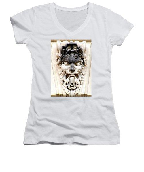 Us Botanical Garden 2 Women's V-Neck T-Shirt (Junior Cut) by Randall Weidner