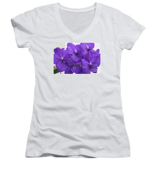 Vanda Pachara Delight #2 Women's V-Neck T-Shirt