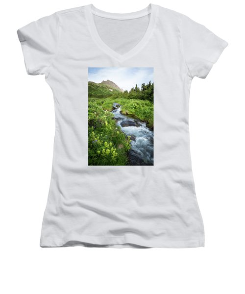 Verdant Mountain Stream Women's V-Neck T-Shirt
