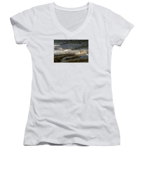View From Masada Women's V-Neck T-Shirt (Junior Cut) by Dubi Roman