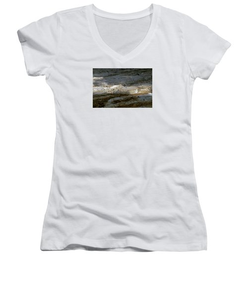 View From Masada Women's V-Neck T-Shirt