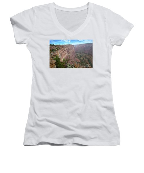 Women's V-Neck T-Shirt (Junior Cut) featuring the photograph View From The Top by Anne Rodkin