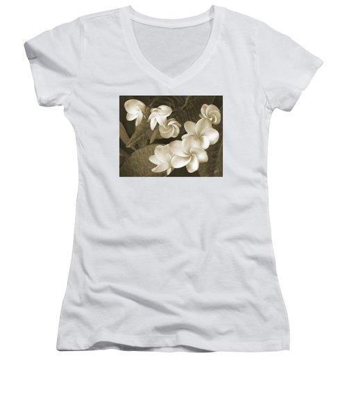 Vintage Plumeria Women's V-Neck T-Shirt (Junior Cut) by Ben and Raisa Gertsberg