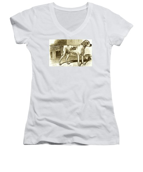 Vintage Sepia German Shorthaired Pointer Women's V-Neck T-Shirt (Junior Cut) by Marian Cates