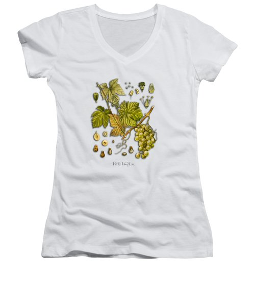Vitis Vinifera Women's V-Neck T-Shirt