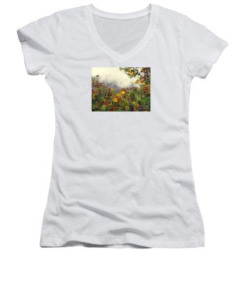 Volcano Scene Reunion Island Women's V-Neck T-Shirt (Junior Cut) by John Potts