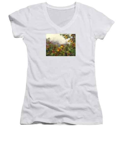 Volcano Scene Reunion Island Women's V-Neck (Athletic Fit)