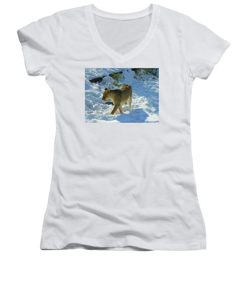 Walking On The Wild Side Women's V-Neck T-Shirt (Junior Cut) by Emmy Marie Vickers