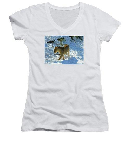 Walking On The Wild Side Women's V-Neck T-Shirt