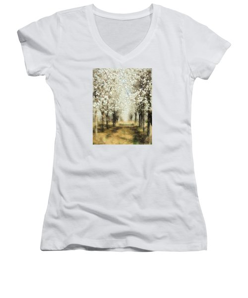 Walking Through A Dream Ap Women's V-Neck T-Shirt (Junior Cut) by Dan Carmichael