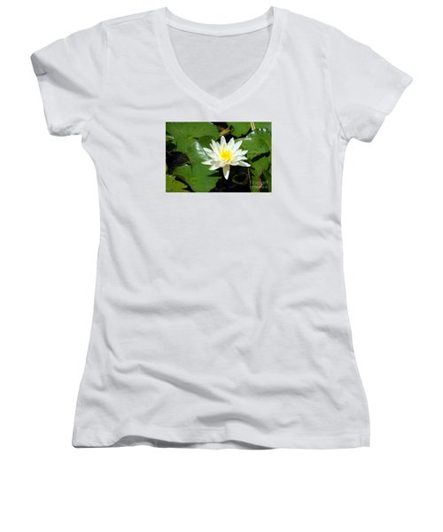 Water Lily 7 Women's V-Neck T-Shirt