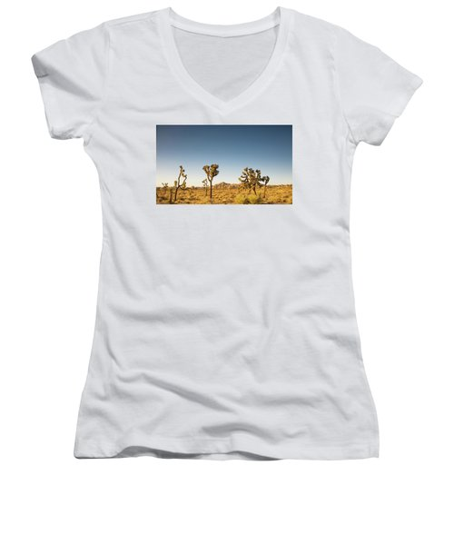 We Love This Sunset Women's V-Neck