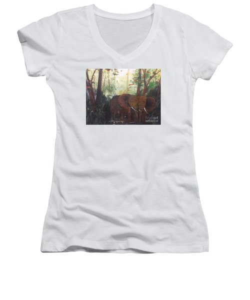 We Two Women's V-Neck T-Shirt (Junior Cut) by Trilby Cole