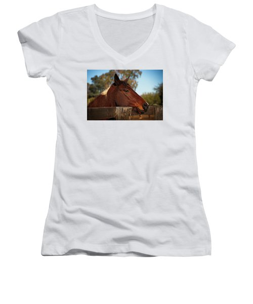 Well Hello There Women's V-Neck