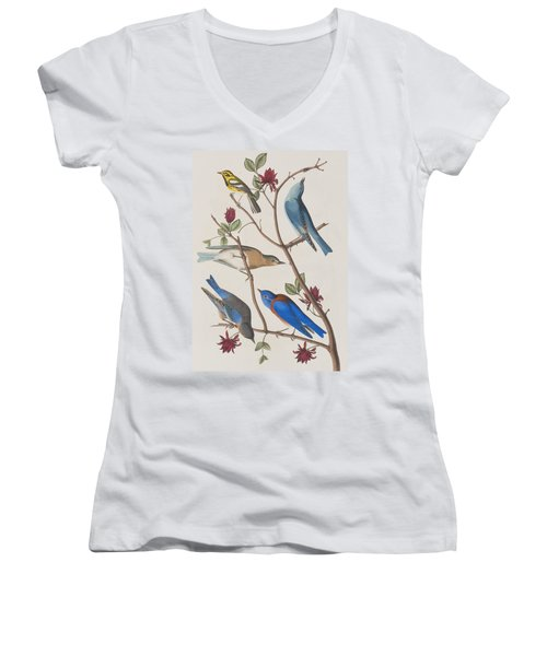 Western Blue-bird Women's V-Neck (Athletic Fit)
