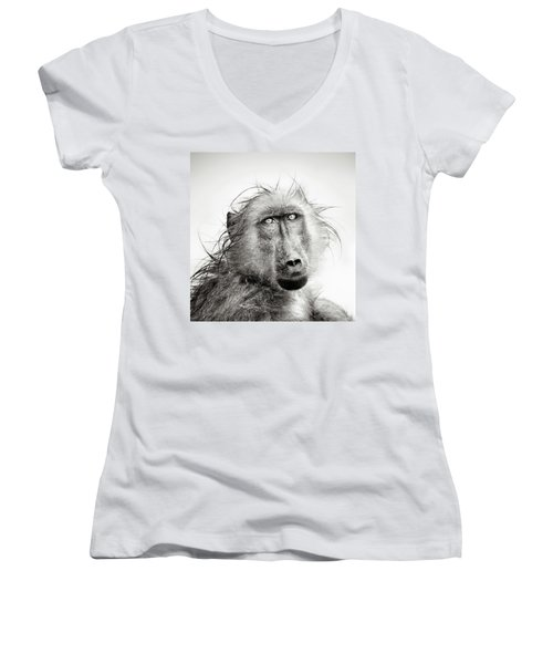 Wet Baboon Portrait Women's V-Neck T-Shirt (Junior Cut) by Johan Swanepoel