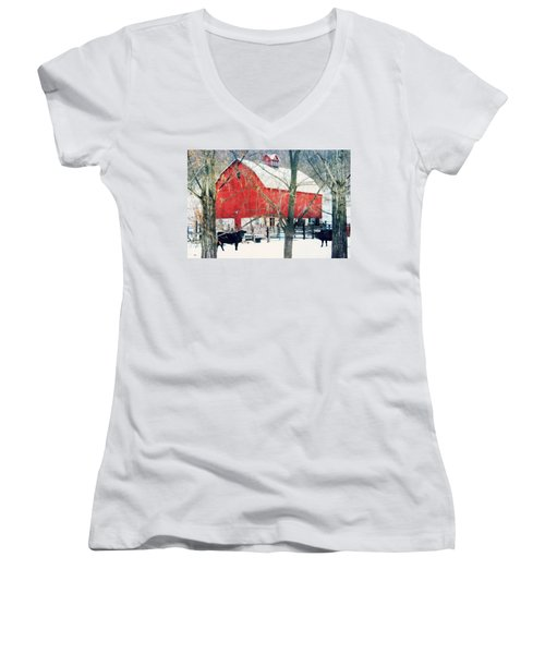 Women's V-Neck T-Shirt (Junior Cut) featuring the photograph Whatcha Looking At by Julie Hamilton