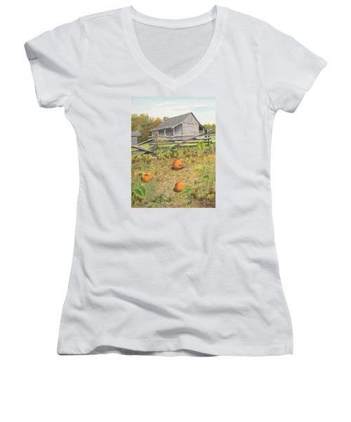 What's Left Of The Old Homestead Women's V-Neck T-Shirt (Junior Cut) by Norm Starks