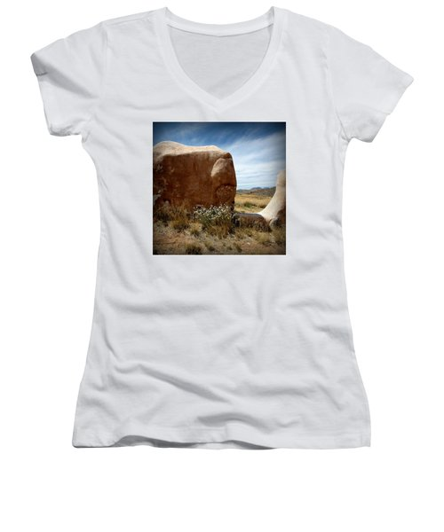 Women's V-Neck T-Shirt (Junior Cut) featuring the photograph Where Have All The Flowers Gone by Joe Kozlowski