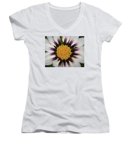 White And Purple Zinnia With Yellow Women's V-Neck T-Shirt