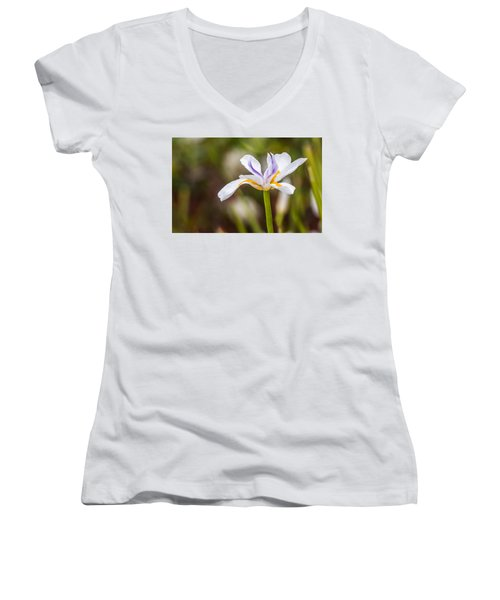 White Beardless Iris Women's V-Neck