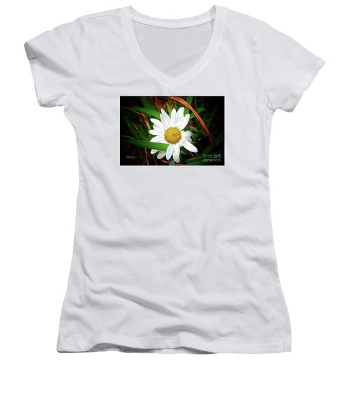White Daisy Women's V-Neck T-Shirt (Junior Cut) by Inspirational Photo Creations Audrey Woods