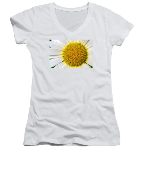 White Daisy Close Up Women's V-Neck (Athletic Fit)