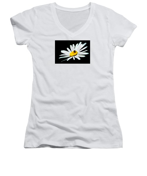 Women's V-Neck T-Shirt (Junior Cut) featuring the photograph White Daisy Flower And A Fly by Alexander Senin