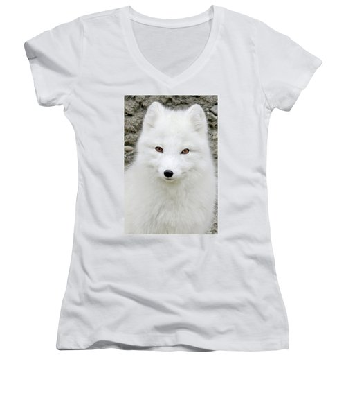White Fox Women's V-Neck T-Shirt (Junior Cut) by Athena Mckinzie