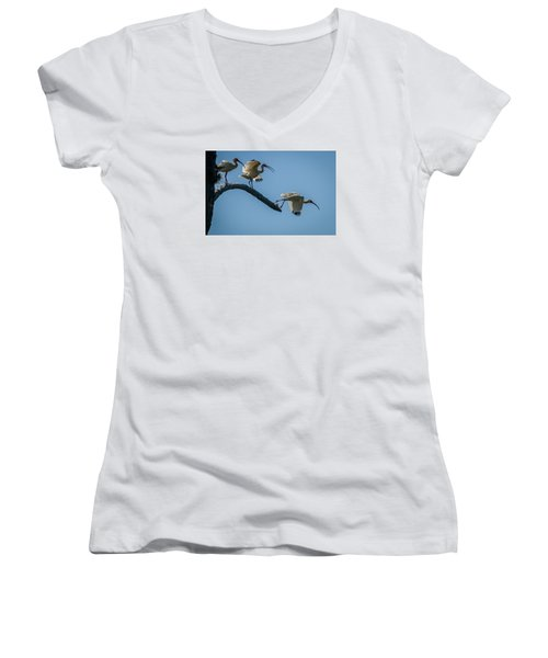 White Ibis Takeoff Women's V-Neck T-Shirt