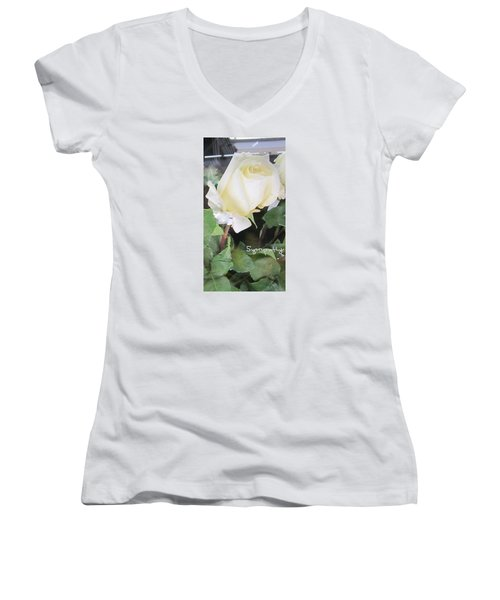White Rose - Sympathy Card Women's V-Neck (Athletic Fit)