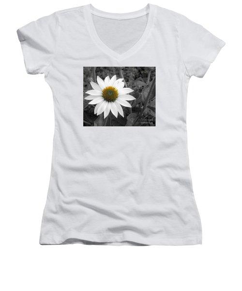 White Swan Women's V-Neck T-Shirt