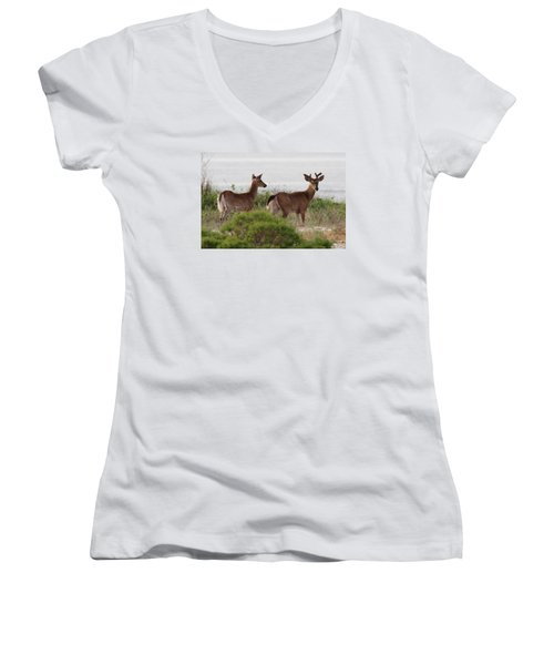 White Tail Deer Port Jefferson New York Women's V-Neck (Athletic Fit)