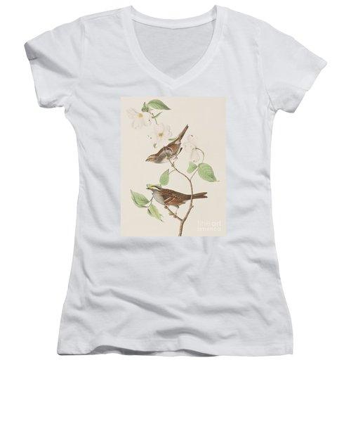 White Throated Sparrow Women's V-Neck T-Shirt (Junior Cut) by John James Audubon