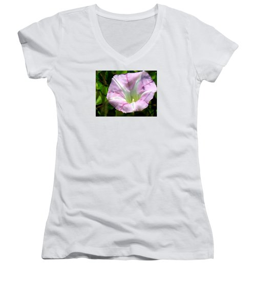 Wild Morning Glory Women's V-Neck T-Shirt