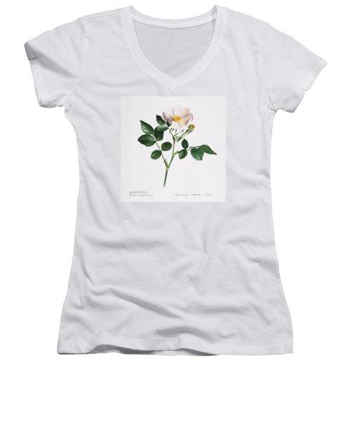 Wild Rose Women's V-Neck