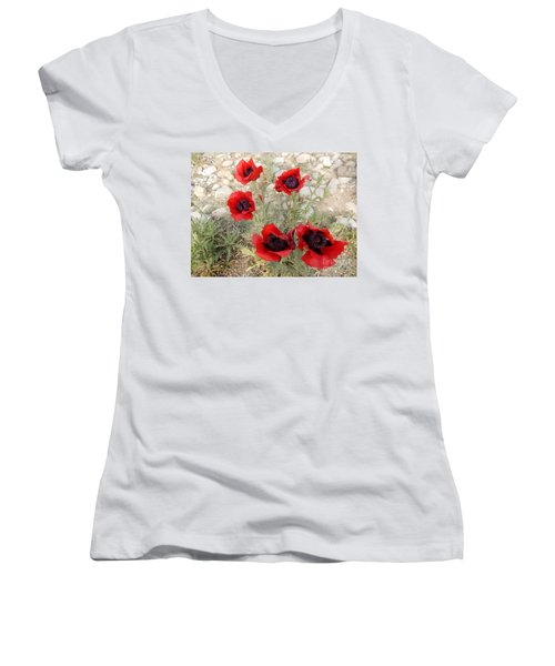Wildflowers Women's V-Neck