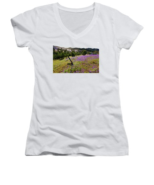 Willow Springs Station Women's V-Neck T-Shirt