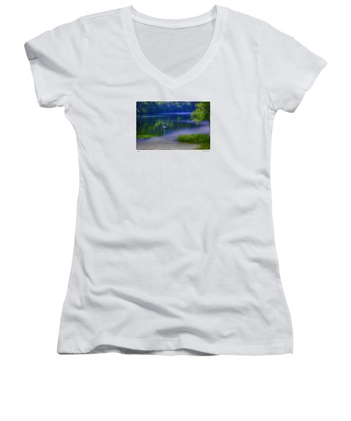 Wings Women's V-Neck T-Shirt (Junior Cut) by R Thomas Berner