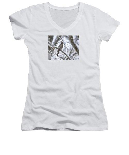 Winter Admiration Women's V-Neck T-Shirt