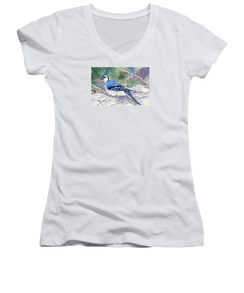Winter Blues Women's V-Neck T-Shirt