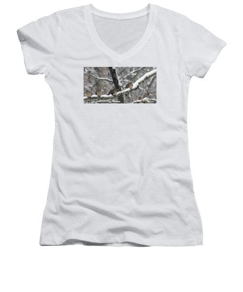 Winter Doves Women's V-Neck T-Shirt (Junior Cut) by Diane Giurco