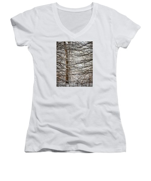 Winter In The Woods Women's V-Neck (Athletic Fit)