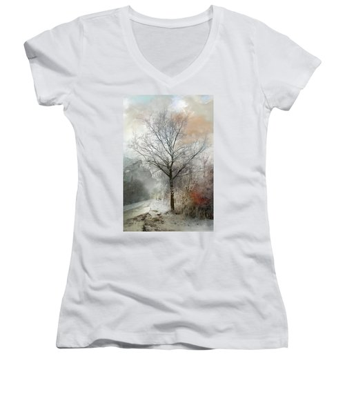 Winter Magic Women's V-Neck