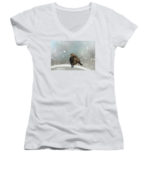 Winter Morning Women's V-Neck
