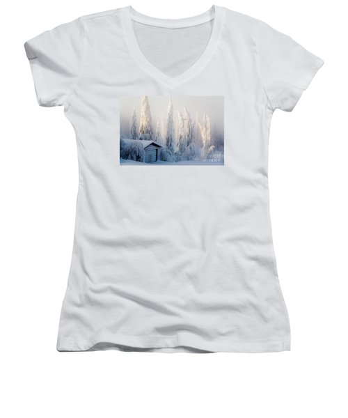 Winter Scene Women's V-Neck T-Shirt